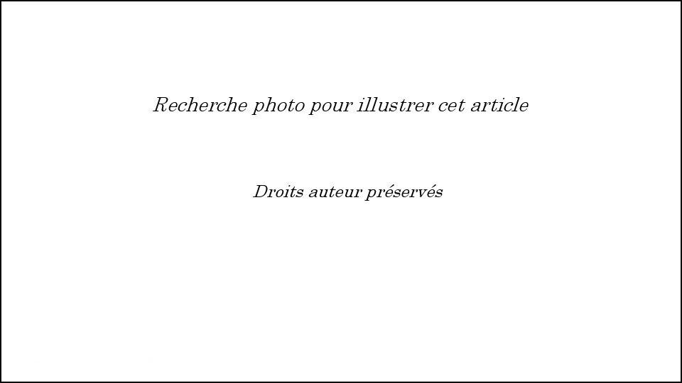 RecherPhoto